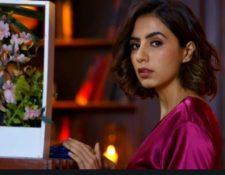 Mehendi Hai Rachne Wali 23rd April 2021 Written Update: Pallavi's lie gets revealed