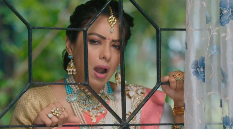 Anupama 20th May 2021 Written Update: Shahs attend the engagement