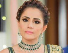 Choti Sardarni Upcoming Twist: Harleen's decision about Param hurts Meher